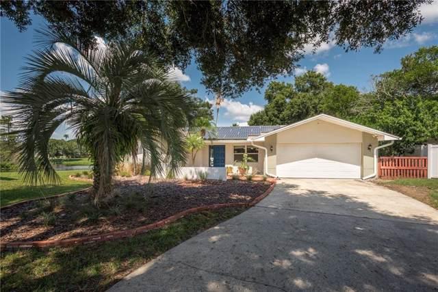 1289 Raleigh Court, Tarpon Springs, FL 34689 (MLS #W7816290) :: Team Borham at Keller Williams Realty