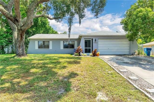 5394 Ashland Drive, Spring Hill, FL 34606 (MLS #W7816332) :: Burwell Real Estate