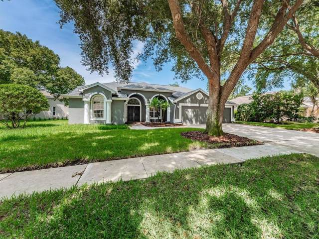 4690 Wrentham Place, Palm Harbor, FL 34685 (MLS #W7816346) :: Premium Properties Real Estate Services