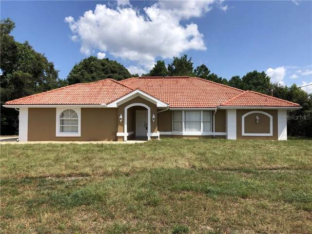 1510 Deborah Drive, Spring Hill, FL 34609 (MLS #W7816357) :: Dalton Wade Real Estate Group