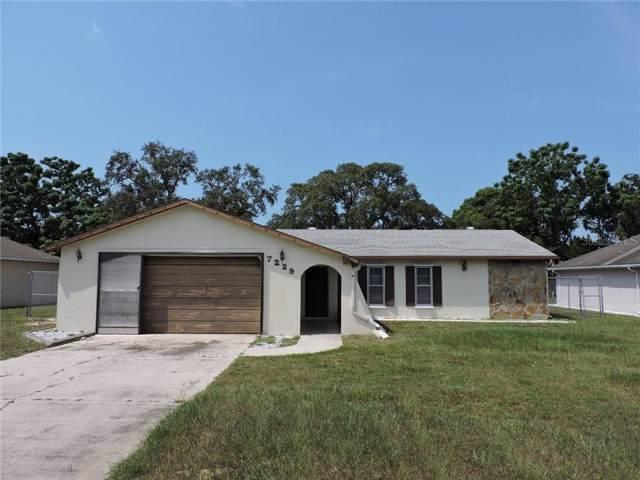 7229 Davenport Lane, Spring Hill, FL 34606 (MLS #W7816390) :: Burwell Real Estate