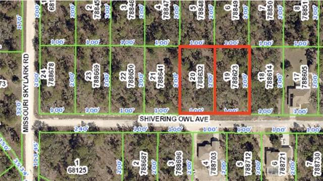 11223 Shivering Owl Avenue, Weeki Wachee, FL 34614 (MLS #W7816394) :: Ideal Florida Real Estate