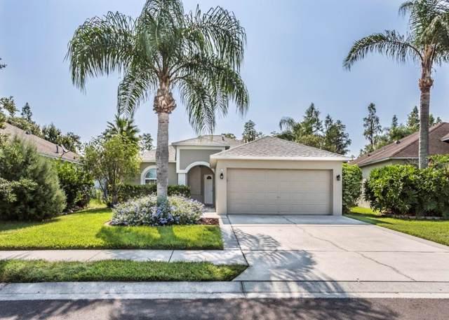 1628 Crossvine Court, Trinity, FL 34655 (MLS #W7816430) :: Premier Home Experts