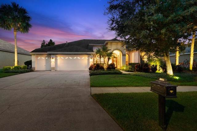 10512 Greensprings Drive, Tampa, FL 33626 (MLS #W7816497) :: Cartwright Realty