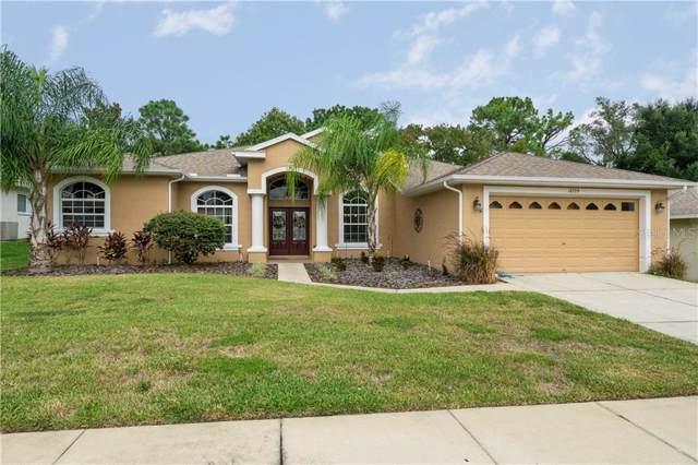 10539 Audie Brook Drive, Spring Hill, FL 34608 (MLS #W7816505) :: Team Pepka
