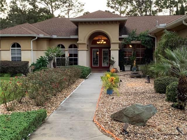 15298 Hiburn Street, Brooksville, FL 34604 (MLS #W7816603) :: Baird Realty Group