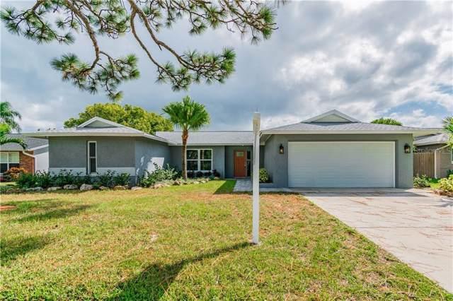 1407 Oleander Drive, Tarpon Springs, FL 34689 (MLS #W7816760) :: Alpha Equity Team