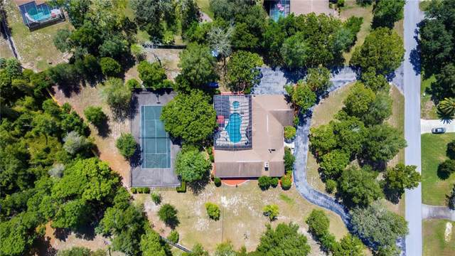 5408 Patricia Place, Weeki Wachee, FL 34607 (MLS #W7816862) :: Mark and Joni Coulter | Better Homes and Gardens