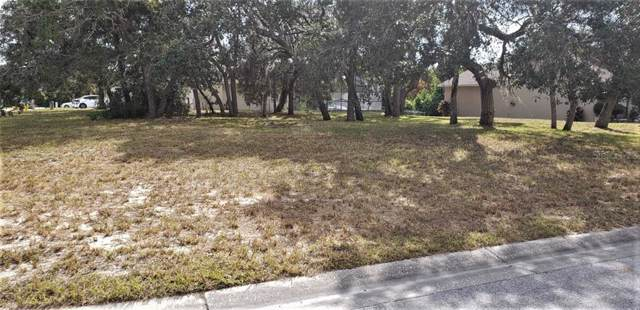 18850 Green Park Road, Hudson, FL 34667 (MLS #W7816900) :: Bob Paulson with Vylla Home