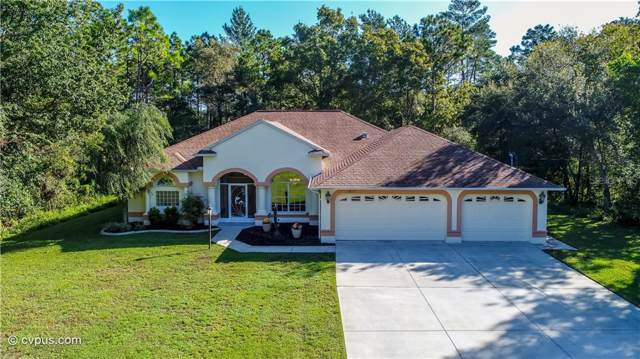 14117 Linden Drive, Spring Hill, FL 34609 (MLS #W7817062) :: Mark and Joni Coulter | Better Homes and Gardens