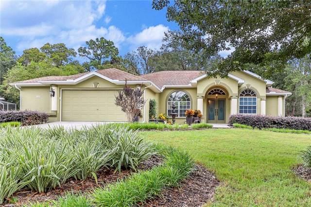 186 Cypress Boulevard E, Homosassa, FL 34446 (MLS #W7817073) :: Cartwright Realty