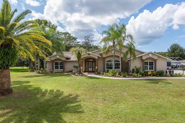 9050 Bullrush Court, New Port Richey, FL 34654 (MLS #W7817103) :: Griffin Group