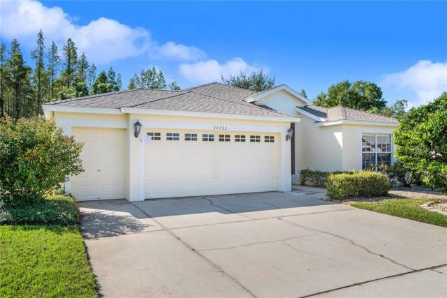 20722 Nectarine Place, Land O Lakes, FL 34637 (MLS #W7817129) :: Team Suzy Kolaz