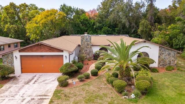 13409 Wagner Drive, Hudson, FL 34667 (MLS #W7817130) :: Cartwright Realty