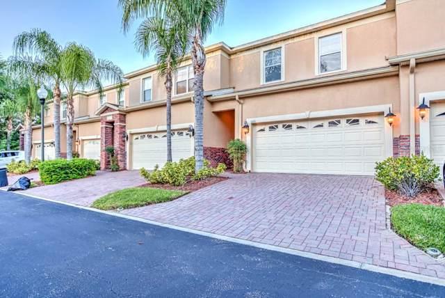 1426 Hillview Lane, Tarpon Springs, FL 34689 (MLS #W7817136) :: Lockhart & Walseth Team, Realtors