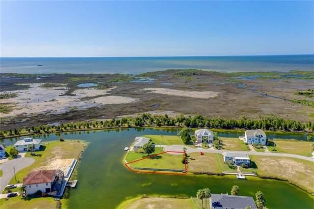 3346 Bluefish Drive, Hernando Beach, FL 34607 (MLS #W7817137) :: 54 Realty