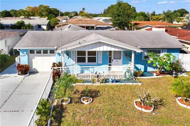 7135 Parrot Drive, Port Richey, FL 34668 (MLS #W7817145) :: Bustamante Real Estate
