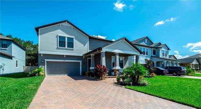 4674 Chadmore Court, Wesley Chapel, FL 33543 (MLS #W7817201) :: Baird Realty Group