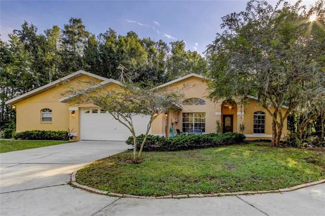 6938 Copperfield Drive, New Port Richey, FL 34655 (MLS #W7817214) :: Florida Real Estate Sellers at Keller Williams Realty