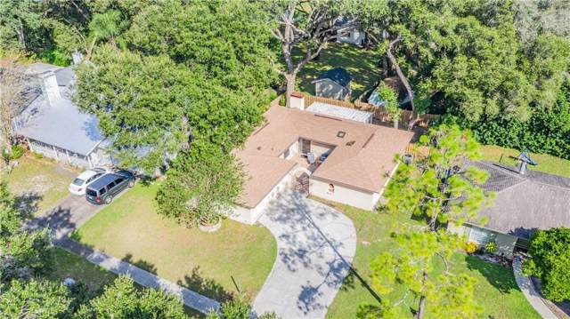 2413 Forrest Crest Circle, Lutz, FL 33549 (MLS #W7817228) :: Rabell Realty Group