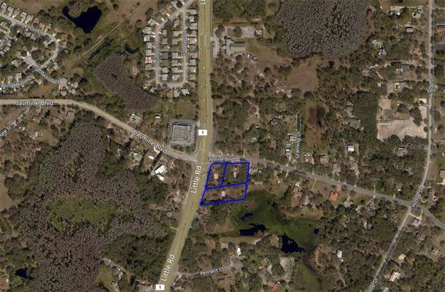 10330 Little Road, New Port Richey, FL 34654 (MLS #W7817252) :: The Duncan Duo Team