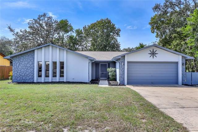 315 Galaxy Avenue, Spring Hill, FL 34606 (MLS #W7817279) :: Bustamante Real Estate