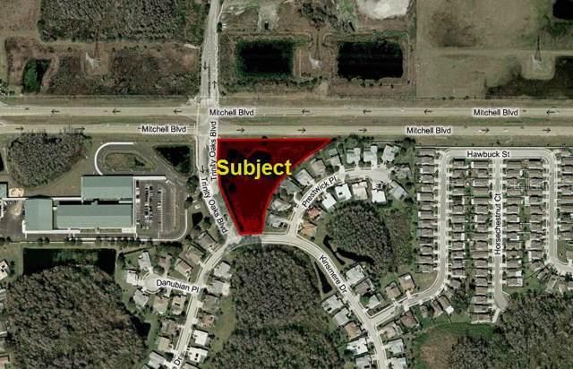 Mitchell Boulevard, Trinity, FL 34655 (MLS #W7817282) :: Paolini Properties Group