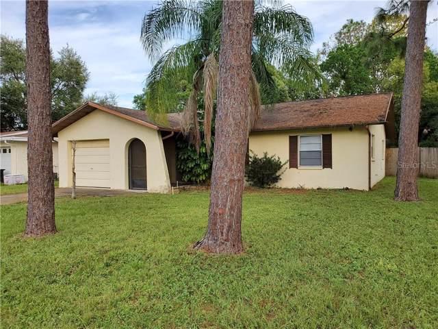 6634 Hone Street, New Port Richey, FL 34653 (MLS #W7817283) :: Paolini Properties Group