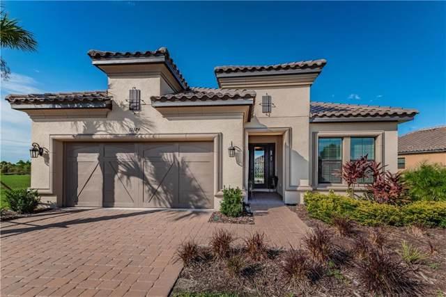 11374 Juglans Drive, Odessa, FL 33556 (MLS #W7817299) :: Premier Home Experts