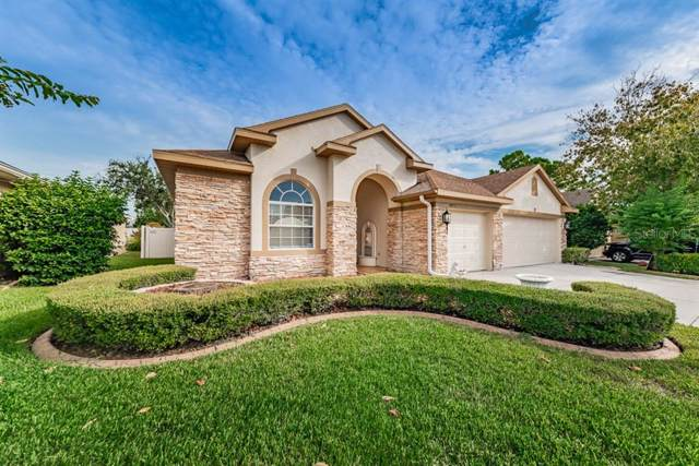 4871 W Breeze Circle, Palm Harbor, FL 34683 (MLS #W7817346) :: The Robertson Real Estate Group