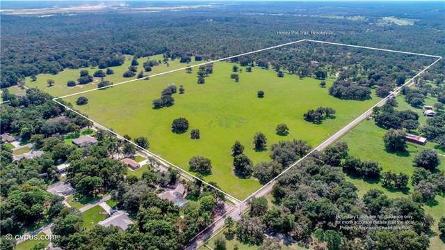 0 Buczak Road, Brooksville, FL 34614 (MLS #W7817354) :: NewHomePrograms.com LLC