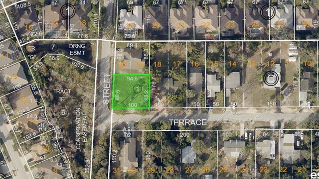 Terrace Road, Tarpon Springs, FL 34689 (MLS #W7817365) :: Lockhart & Walseth Team, Realtors