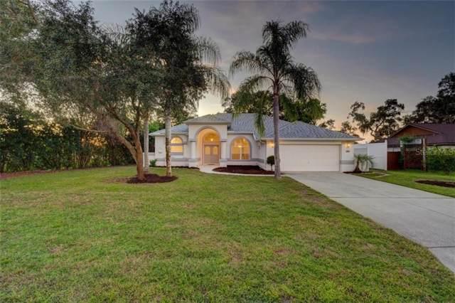 2649 Waterfall Drive, Spring Hill, FL 34608 (MLS #W7817371) :: Dalton Wade Real Estate Group