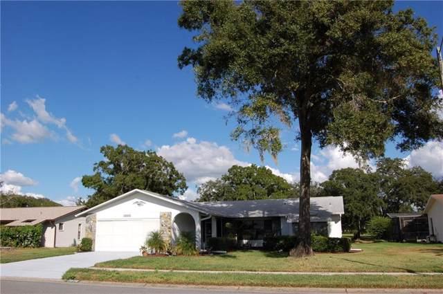 3836 Thornbush Lane, New Port Richey, FL 34655 (MLS #W7817425) :: The Brenda Wade Team