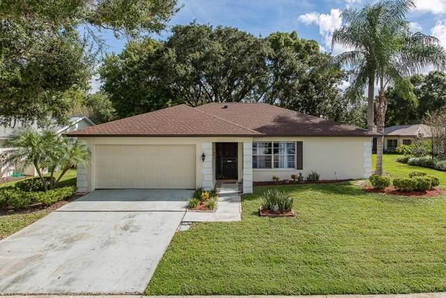 3302 Rankin Drive, New Port Richey, FL 34655 (MLS #W7817539) :: The Robertson Real Estate Group