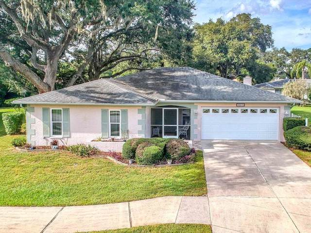 10715 Tonapa Loop, Port Richey, FL 34668 (MLS #W7817612) :: Lockhart & Walseth Team, Realtors