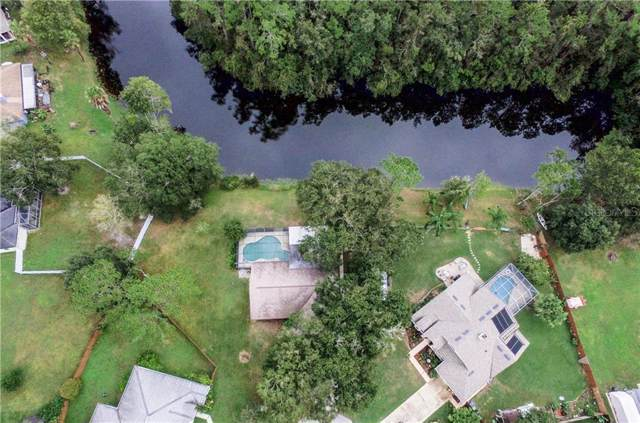 23631 Downs Place, Land O Lakes, FL 34639 (MLS #W7817645) :: RE/MAX CHAMPIONS