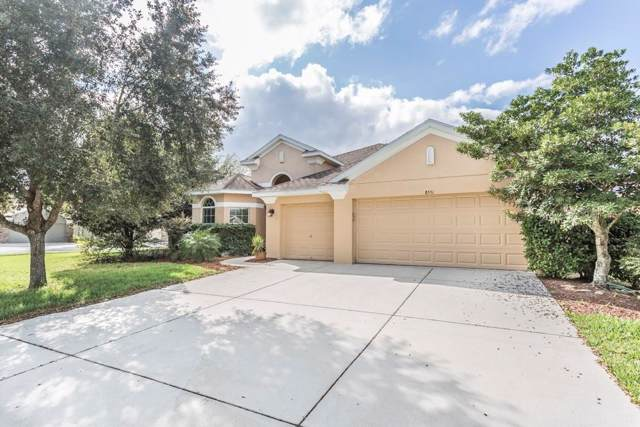 8551 Tenbridge Way, New Port Richey, FL 34654 (MLS #W7817747) :: Griffin Group