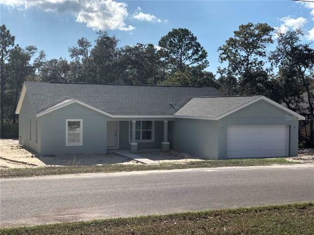 11327 Lapwing Road, Weeki Wachee, FL 34614 (MLS #W7817812) :: Griffin Group