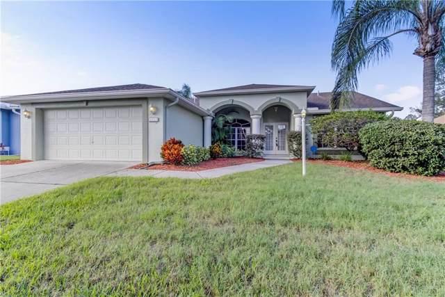 10713 Magrath Lane, New Port Richey, FL 34654 (MLS #W7817856) :: Griffin Group
