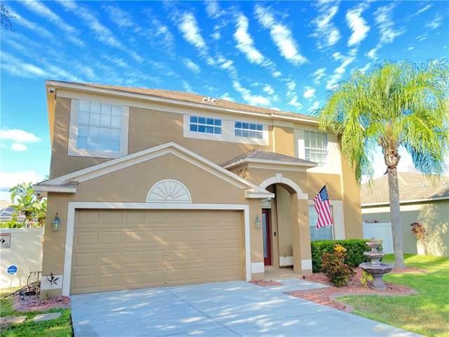1551 Amaryllis Court, Trinity, FL 34655 (MLS #W7817922) :: Griffin Group