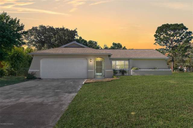 10261 Horizon Drive, Spring Hill, FL 34608 (MLS #W7817924) :: Griffin Group