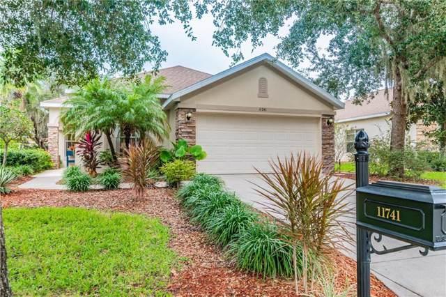 11741 Manistique Way, New Port Richey, FL 34654 (MLS #W7817947) :: Griffin Group