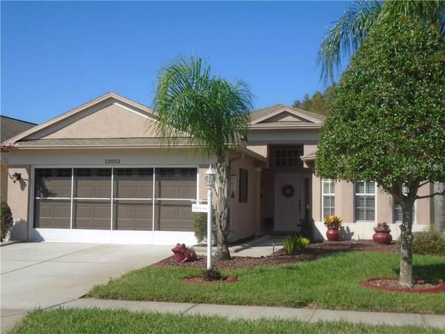 12033 Yellow Finch Lane, Trinity, FL 34655 (MLS #W7817948) :: Cartwright Realty