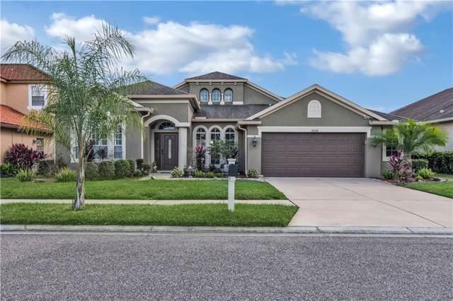 16236 Rambling Road, Odessa, FL 33556 (MLS #W7817949) :: Team Bohannon Keller Williams, Tampa Properties