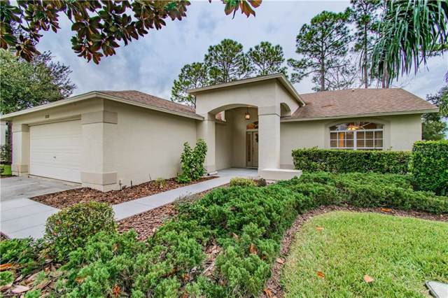 18708 Bellevista Court, Hudson, FL 34667 (MLS #W7817974) :: Rabell Realty Group