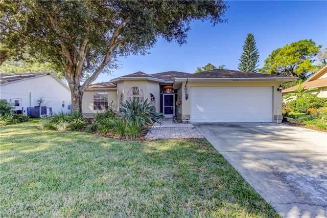 1636 Palomino Drive, Tarpon Springs, FL 34689 (MLS #W7818042) :: Lucido Global