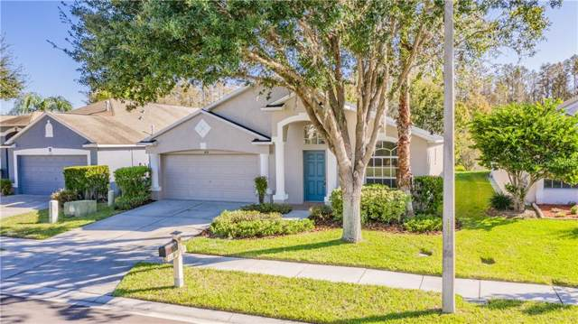 4116 Marchmont Boulevard, Land O Lakes, FL 34638 (MLS #W7818051) :: 54 Realty