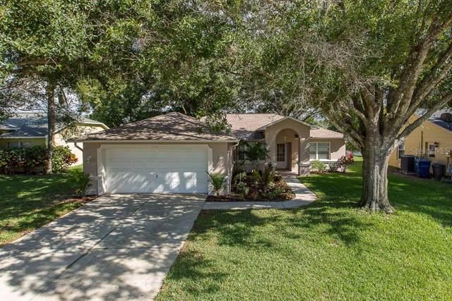 7246 Skyview Avenue, New Port Richey, FL 34653 (MLS #W7818090) :: Team Bohannon Keller Williams, Tampa Properties