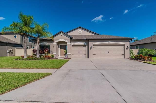 18651 Cortes Creek Boulevard, Spring Hill, FL 34610 (MLS #W7818092) :: Team Borham at Keller Williams Realty